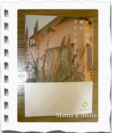 Ahirutokamoweb_1